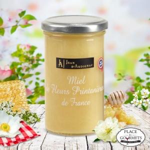 Miel de fleurs printanières (France)