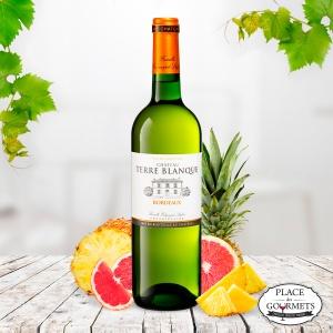 Vin blanc Château Terre Blanque, Bordeaux blanc sec 2017